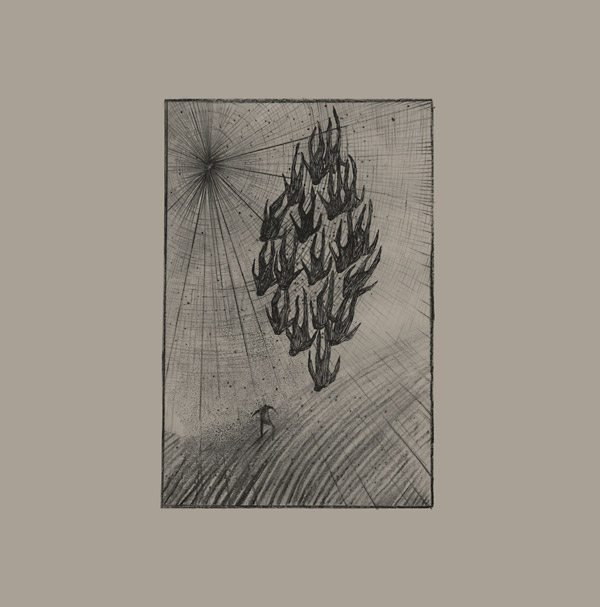 O'Dwyer, Aine - Locusts LP