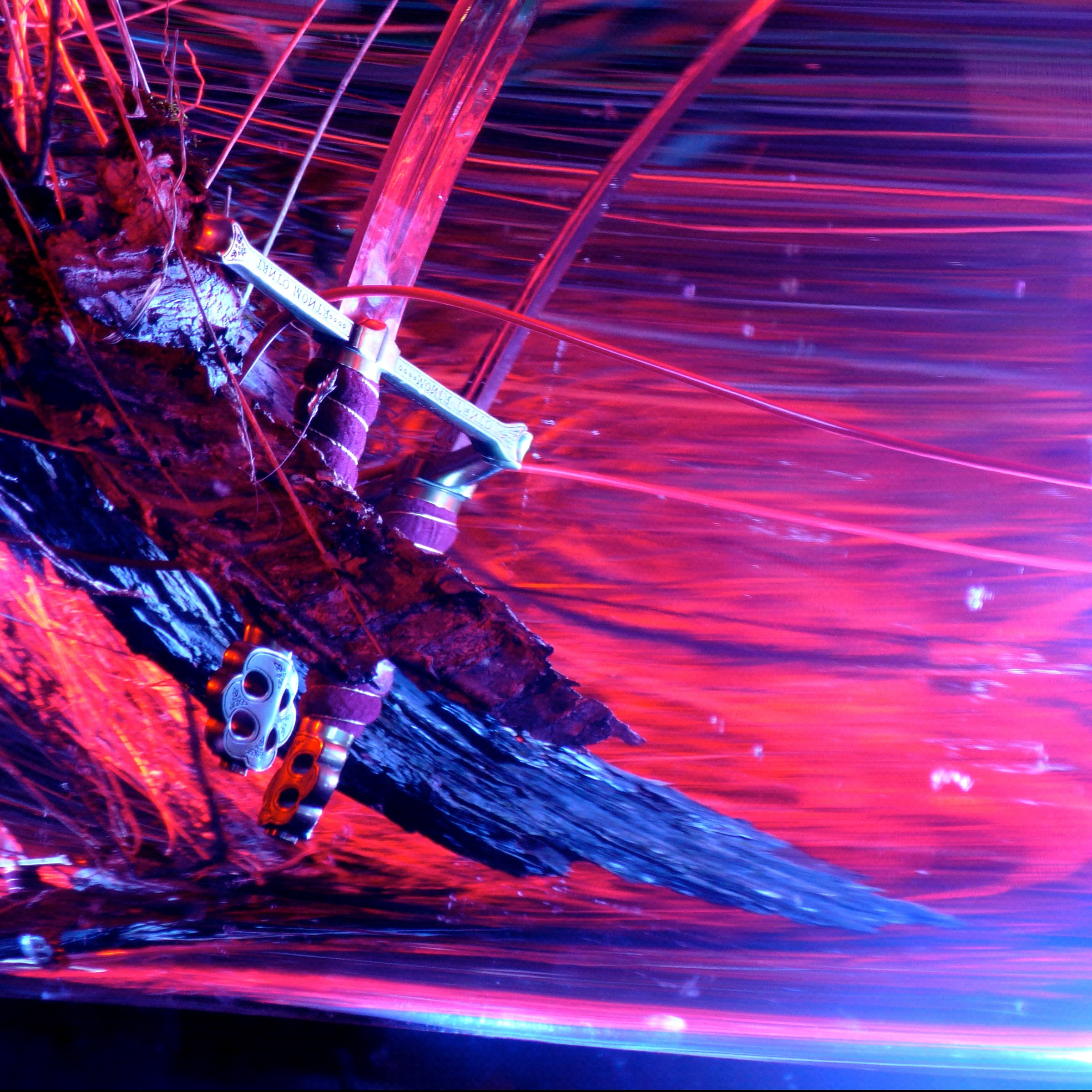 Rhyton - Navigating By Starlight LP