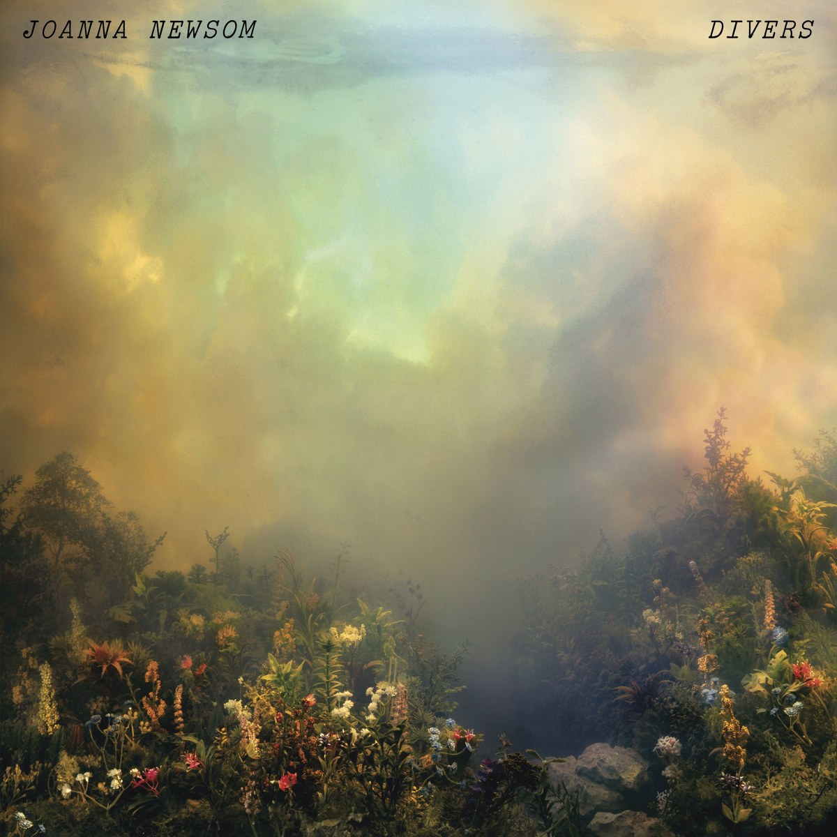 Newsom, Joanna - Divers 2LP
