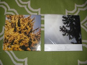 Treetops - Permission/When I Was Younger LP